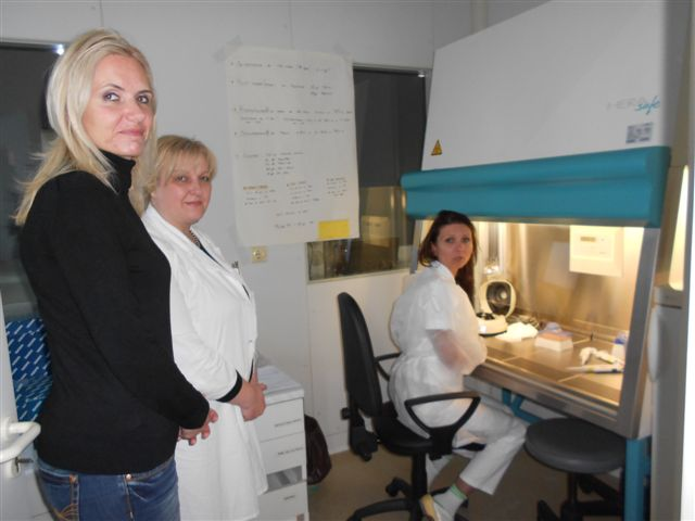 Study Visit on Influenza Surveillance in Serbia, 12-14 May 2014