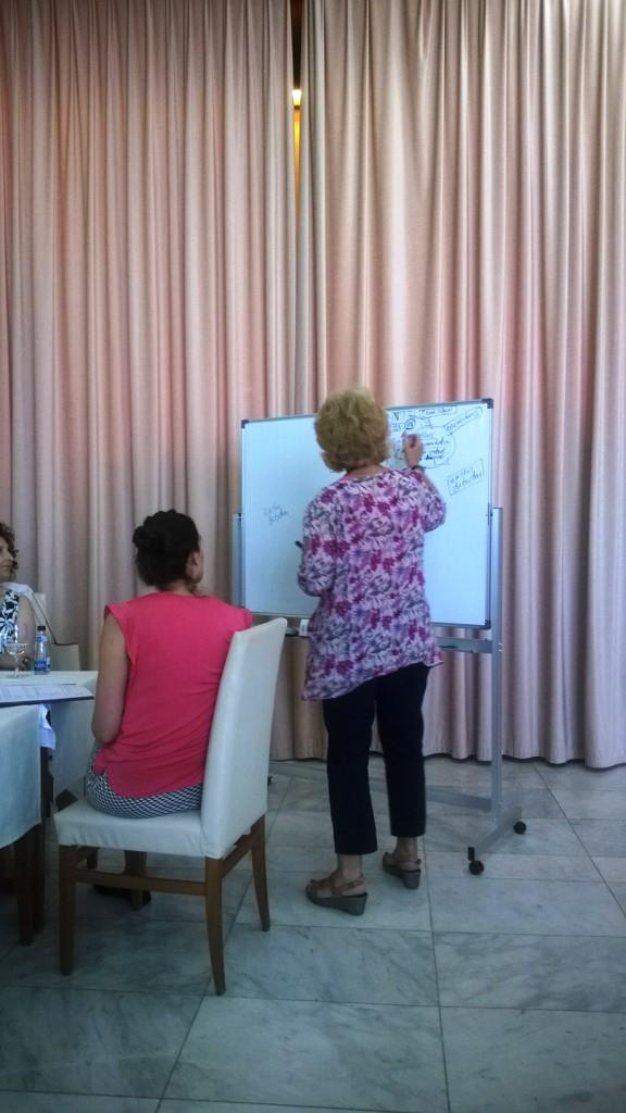 Risk assessment, Risk communication and Notification under IHR Workshop  6-7 July 2015, Budva, Montengro